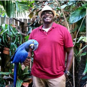 hyacinth macaw for sale in quebec