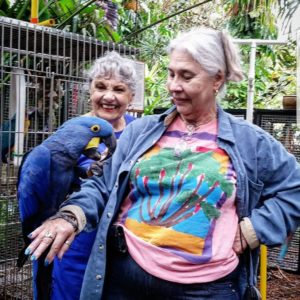 parrots lovers in usa