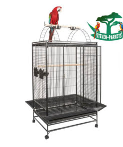 small bird cage with stand - Steven Parrots