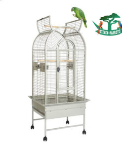 Small Bird Cage - Steven Parrots