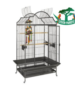 little bird cage - Steven Parrots