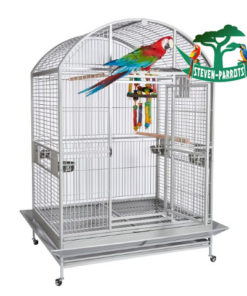 large parrot cages for sale - Steven Parrots